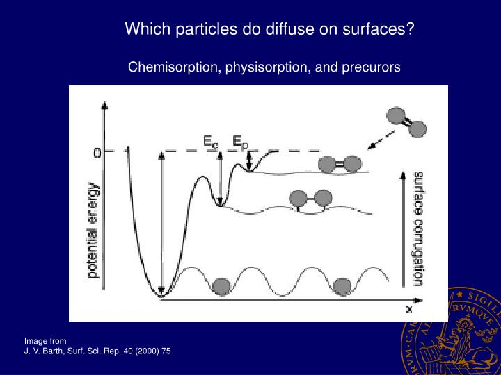 Which particles do diffuse on surfaces?