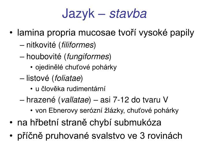 Jazyk –