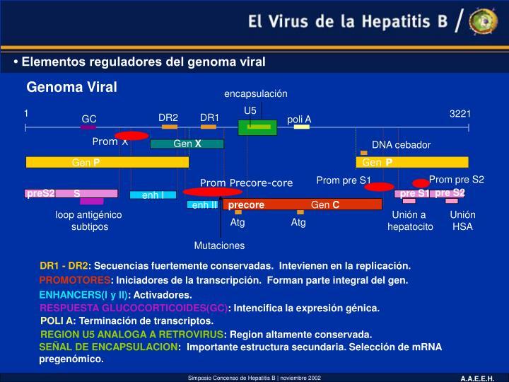 Genoma Viral