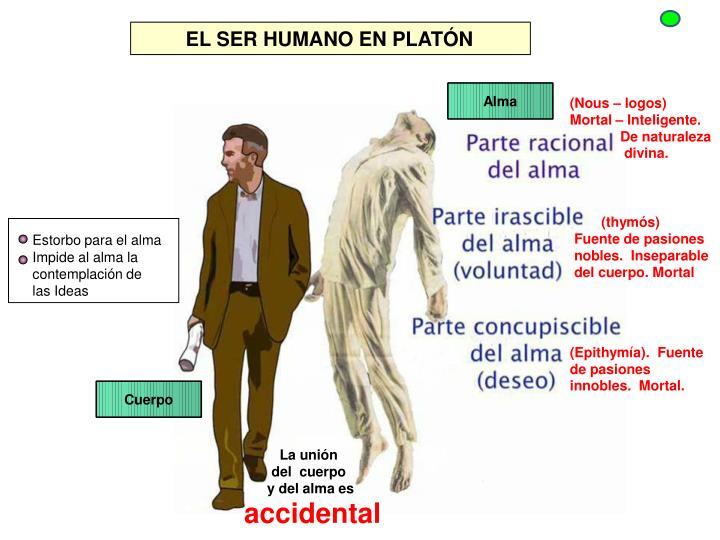 EL SER HUMANO EN PLATÓN
