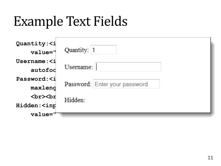 Example Text Fields