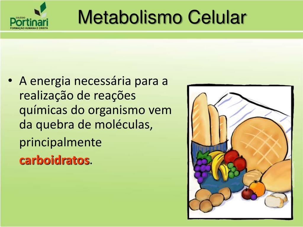 Cómo Metabolismo e influir en las personas