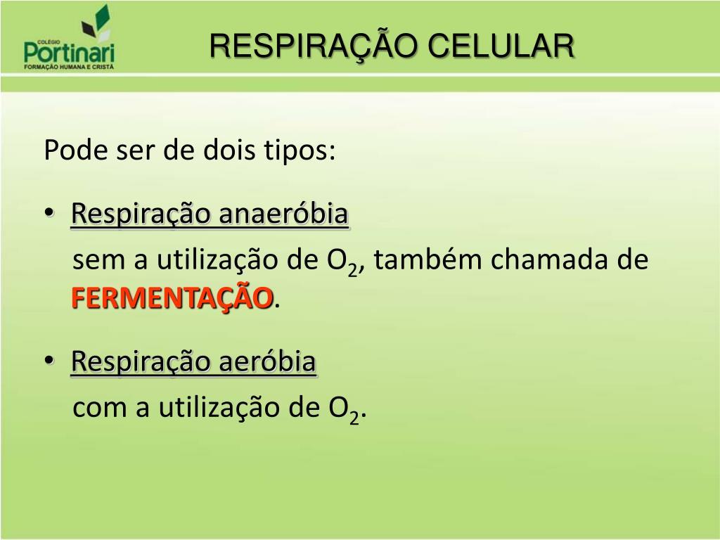 PPT - Metabolismo Celular PowerPoint Presentation, free..