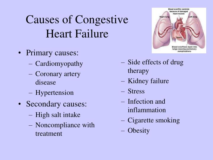 personal impact living with congestive heart failure Nutritious food is powerful medicine, especially for people living with congestive heart failure (chf) if you have chf, a medically tailored diet can help you reduce fluid retention and have more energy while managing your disease.