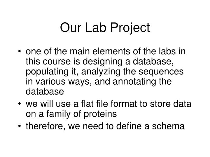 Our Lab Project