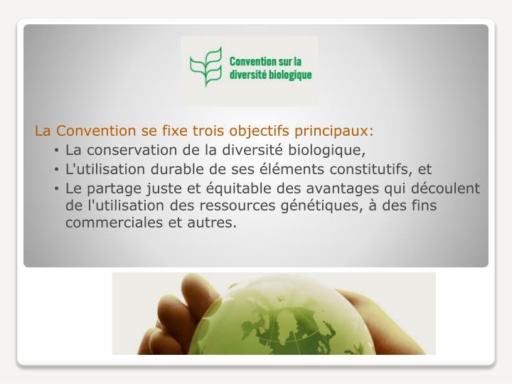 La Convention se fixe trois objectifs principaux: