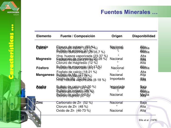 Fuentes Minerales …