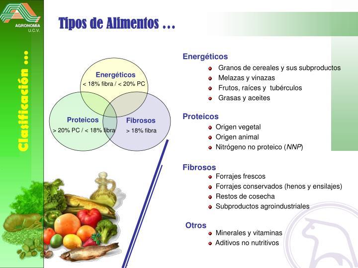 Tipos de Alimentos …