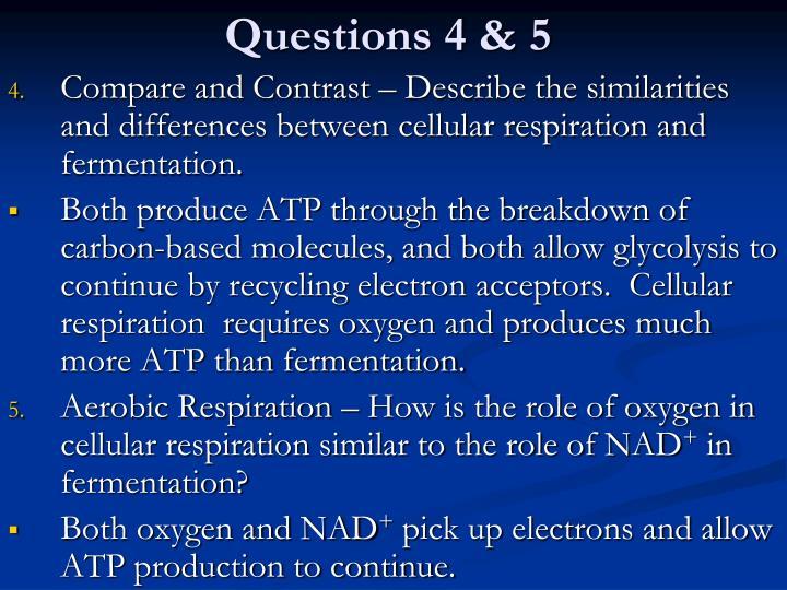 Questions 4 & 5