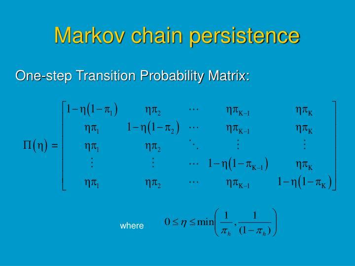 Markov chain persistence