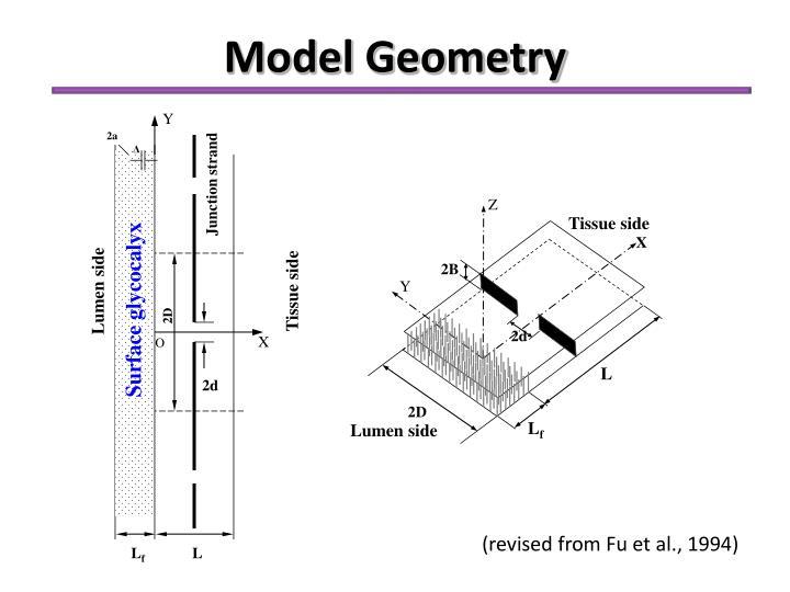 Model Geometry