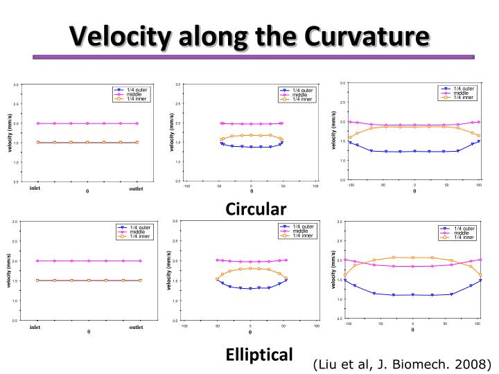 Velocity along the Curvature