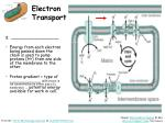 electron transport1