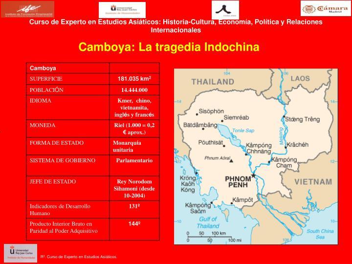 Curso de Experto en Estudios Asiáticos: Historia-Cultura, Economía, Política y Relaciones Interna...