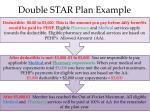double star plan example