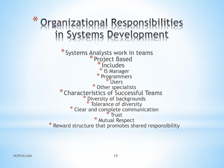 Systems Analysts work in teams