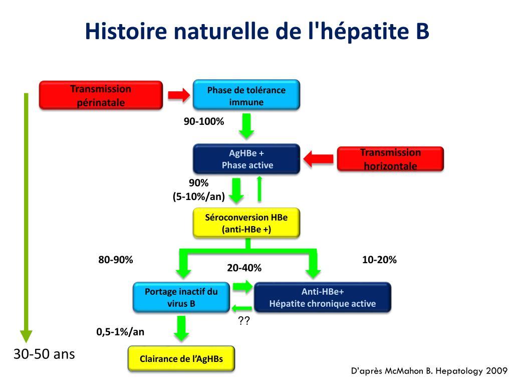 PPT - Hépatite chronique B PowerPoint Presentation - ID:6267504