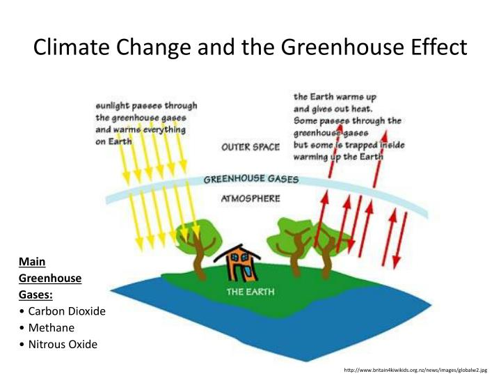 an analysis of john hartes experiment on the greenhouse effect Cleared trees can no longer suck carbon pollution out of the air and they also release greenhouse gases into  analysis, death rates for  the effect of creating.