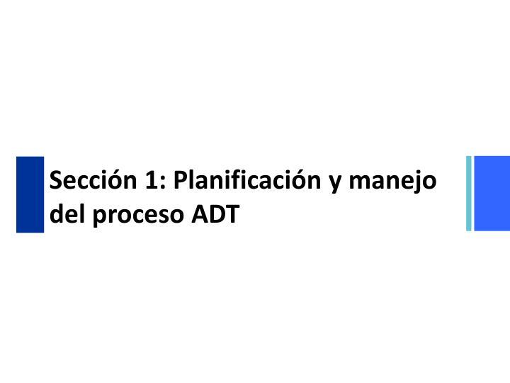 Secci n 1 planificaci n y manejo del proceso adt