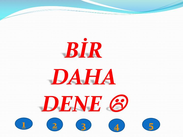 BİR DAHA
