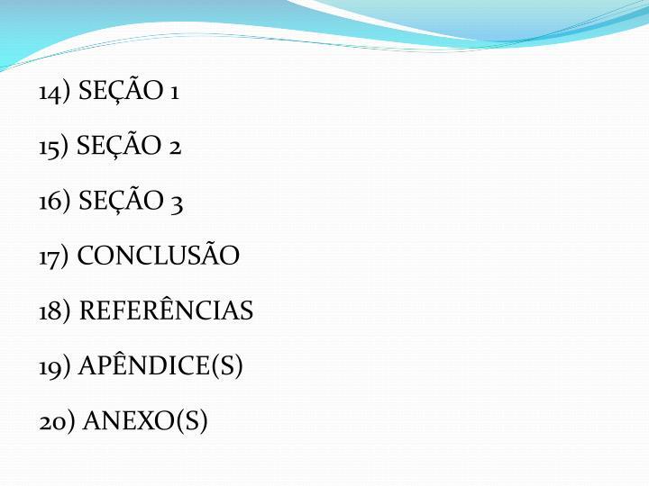 14) SEÇÃO 1
