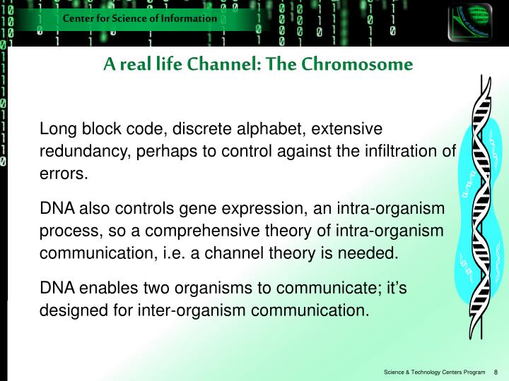 A real life Channel: The Chromosome