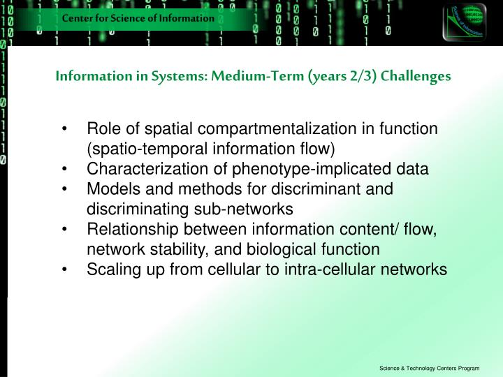 Information in Systems: Medium-Term (years 2/3) Challenges