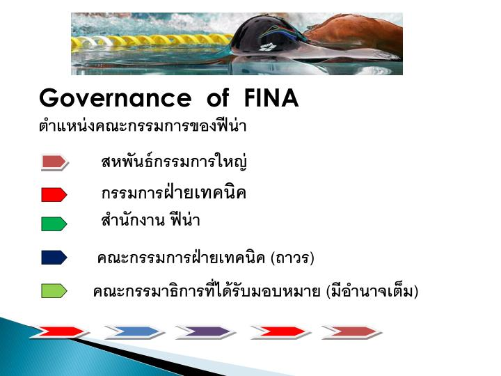 Governance  of  FINA
