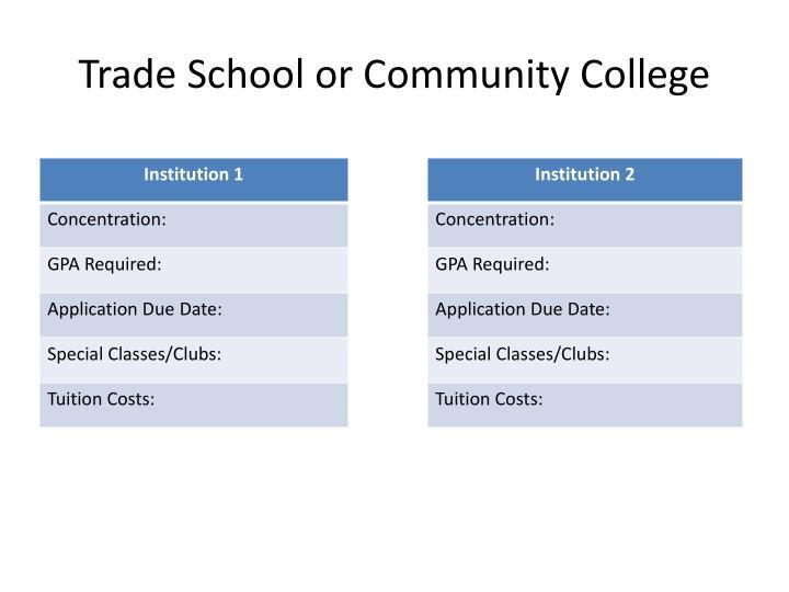 Trade School or Community College