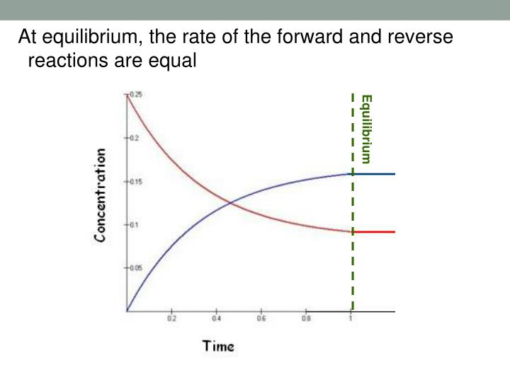 At equilibrium, the rate of the forward and reverse reactions are equal