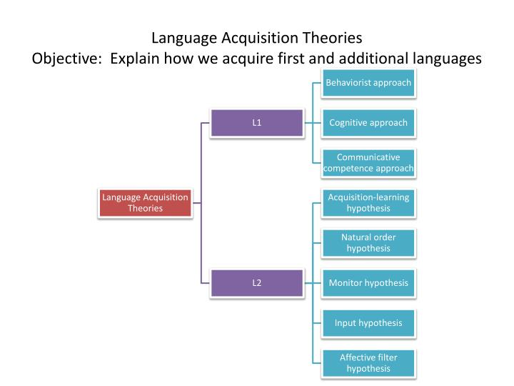 language acquistion theory Approaching language acquisition from the perspective of general cognitive processing is an economical account of how children can learn their first language without an excessive biolinguistic mechanism.