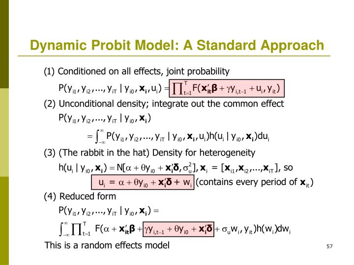 Dynamic Probit Model: A Standard Approach
