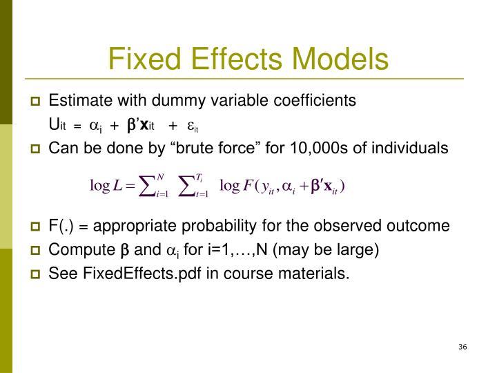 Fixed Effects Models