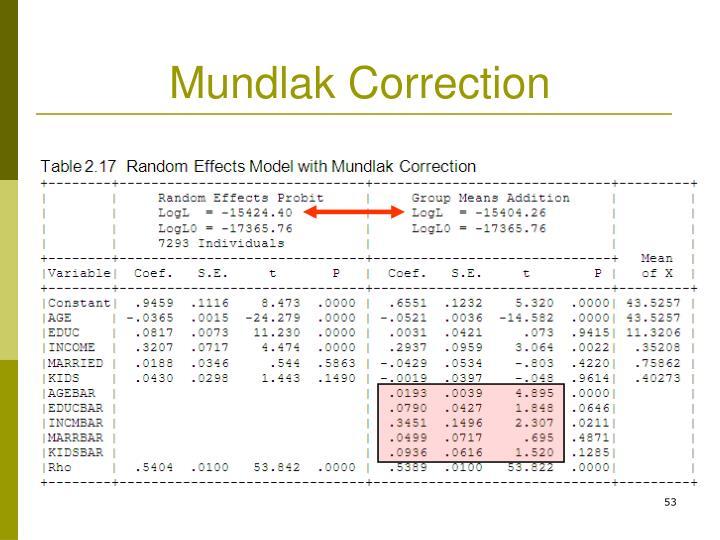 Mundlak Correction