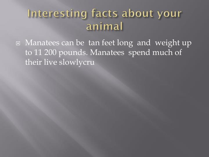 Interesting facts about your animal