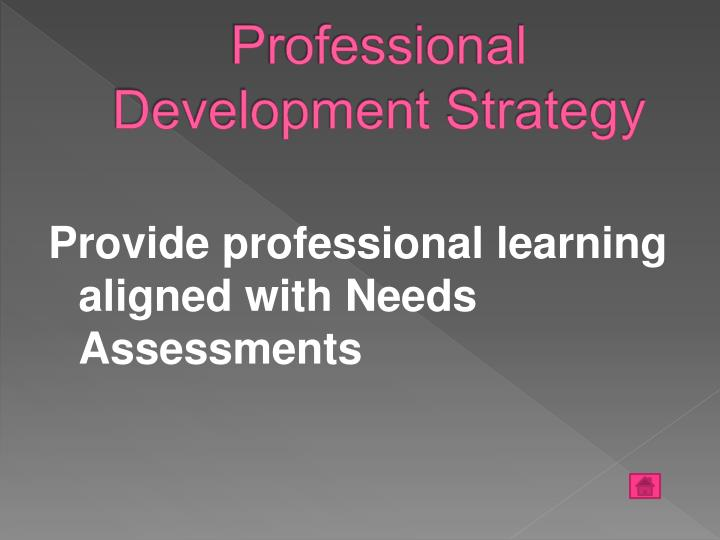 Professional Development Strategy