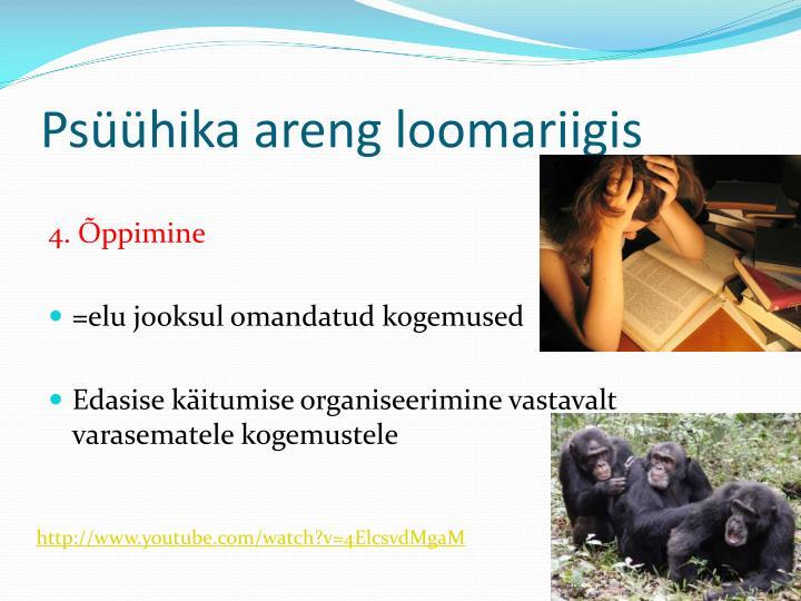 Psüühika areng loomariigis