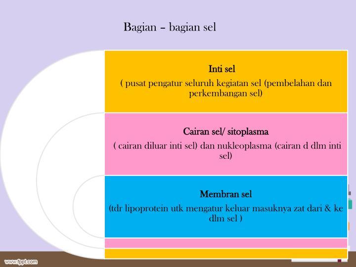Bagian – bagian sel