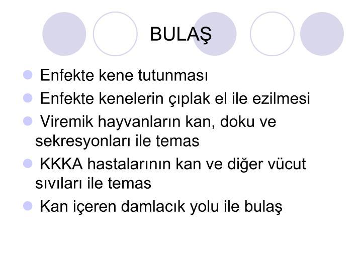 BULAŞ