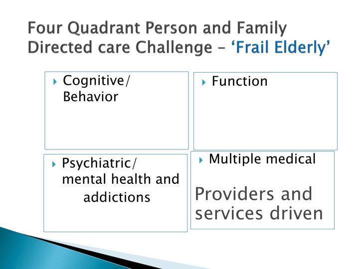 Four Quadrant Person and Family Directed care Challenge