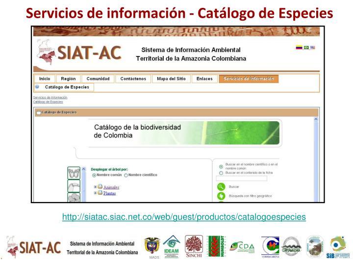 Servicios de información -
