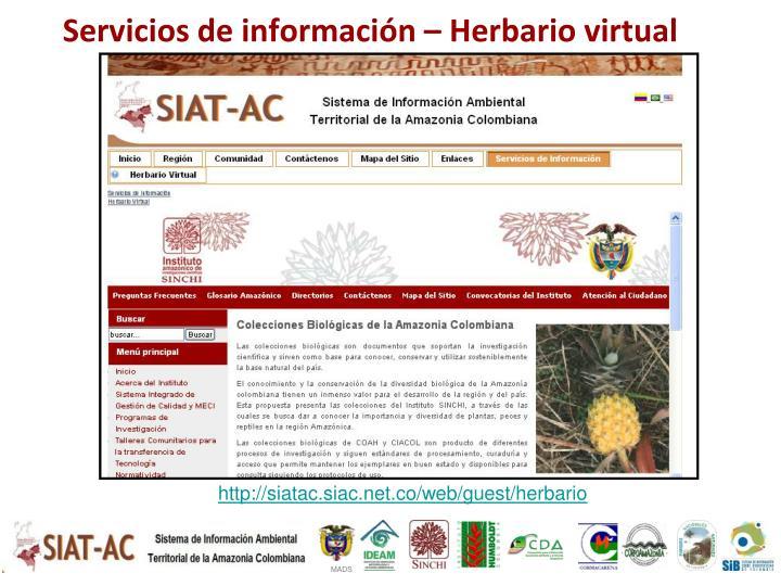 Servicios de información –