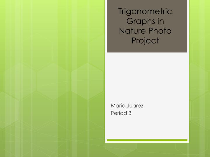 Trigonometric Graphs in Nature Photo Project