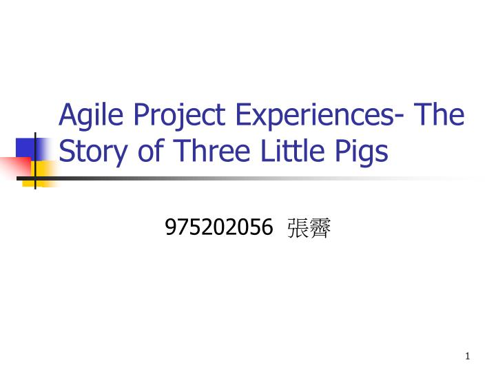 agile project experiences the story of three little pigs n.