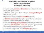 specialieji reikalavimai projektui pagal i iii priemones gairi 45 punktas