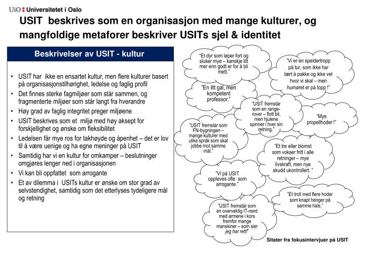 USIT  beskrives som en organisasjon med mange kulturer, og  mangfoldige metaforer beskriver