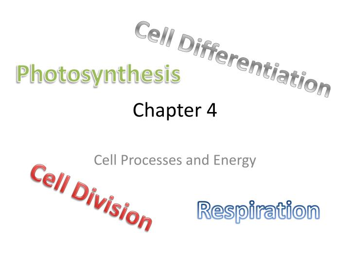 ch 4 photosynthesis The biochemistry of c 4 photosynthesis  during the evolution of c 4 photosynthesis from c~ plants,  ch i 2 cooh c=o i.