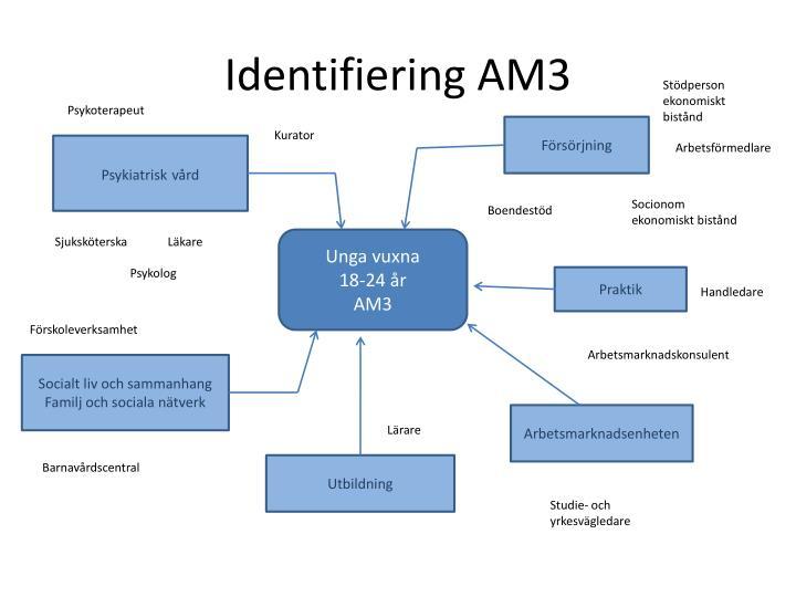 Identifiering AM3