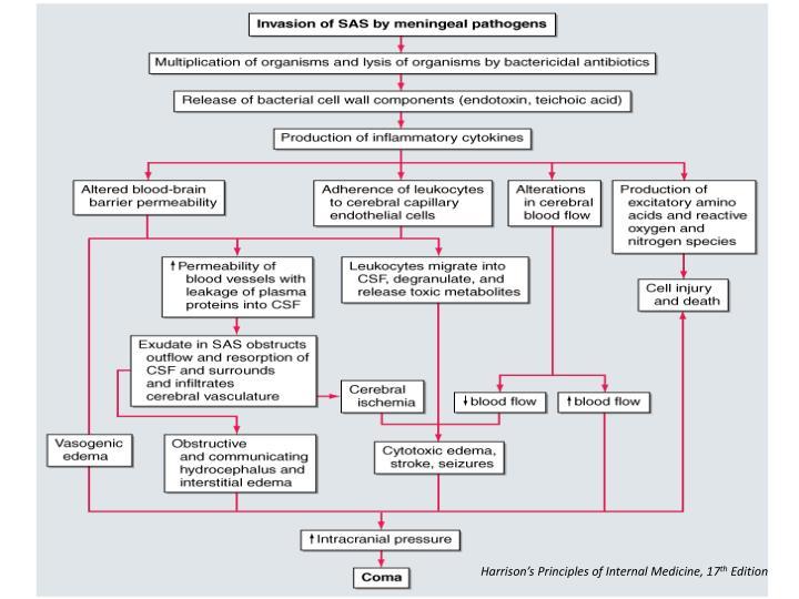 Harrison's Principles of Internal Medicine, 17