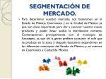 segmentaci n de mercado